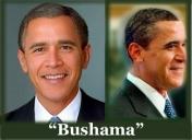 Bushama7-12-13