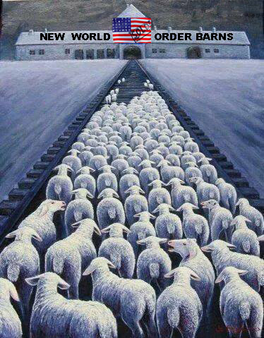 US sheeple