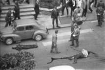 1961-paris-massacre