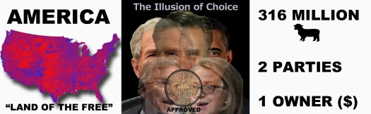 America-Illusion-Of-Choice