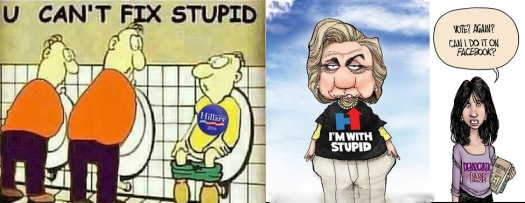 Hillary stupid voters