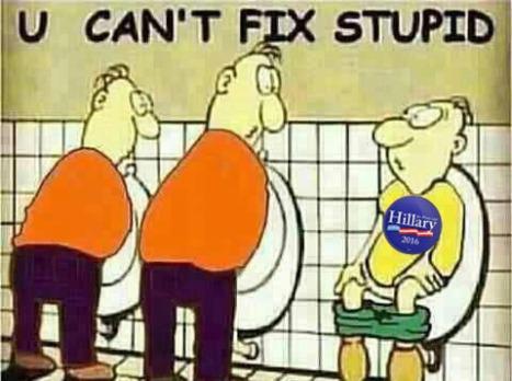 U-Cant-Fix-Stupid