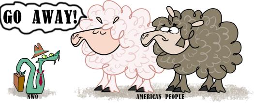 sheep-and-sname