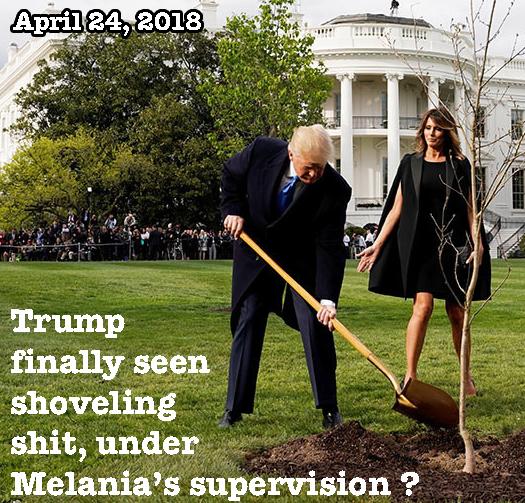 Trump shoveling